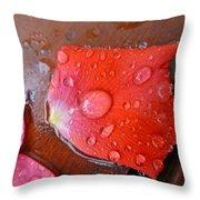 Wet Petal 1 Throw Pillow