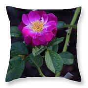 Wet Rose 2 Throw Pillow