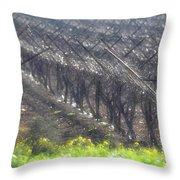 Wet Vineyard Throw Pillow
