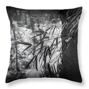 Wet Winter Throw Pillow