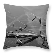 Wet Wood Throw Pillow