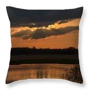 Wetland Sunset Throw Pillow