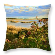 Wetlands In Cape Breton Throw Pillow