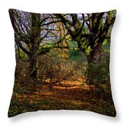 Wetlands In The Fall Throw Pillow