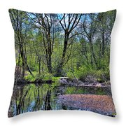 Wetlands Lake Throw Pillow