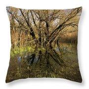 Wetlands Mirror Reflection Throw Pillow