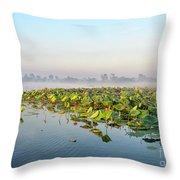 Wetlands Morning Mist  Throw Pillow