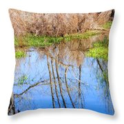 Wetlands Viewing Area In Chatfield State Park Throw Pillow