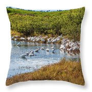 Wetlands Watering Hole Throw Pillow