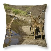 We've Been Waiting For You Throw Pillow