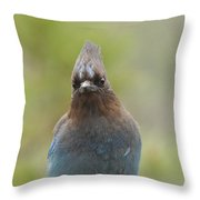 Whadda You Lookin At Throw Pillow