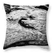 Whake Driftwood Throw Pillow