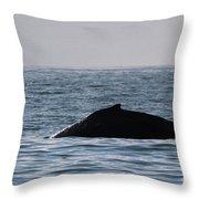 Whale Fin Throw Pillow