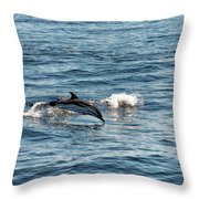 Whale Watching And Dolphins 1 Throw Pillow