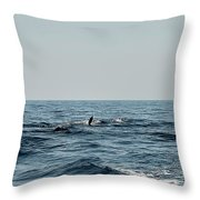 Whale Watching And Dolphins 2 Throw Pillow
