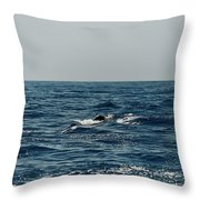 Whale Watching And Dolphins 3 Throw Pillow