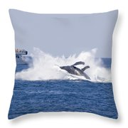 Whalewatcher Show Throw Pillow
