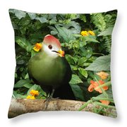 What A Beauty. Throw Pillow