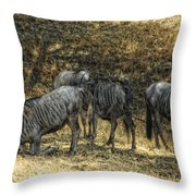 What A Bewildering Day Throw Pillow