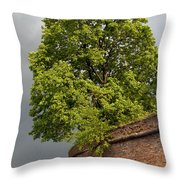 What A Big Vase Throw Pillow