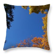 What A Day - Photograph Throw Pillow