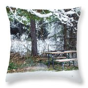 What A Day For A Picnic Throw Pillow