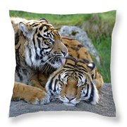 What A Good Buddy Throw Pillow