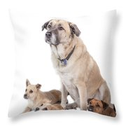 What A Group Throw Pillow