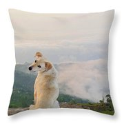 What A View In The Annapurnas Throw Pillow