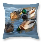 What Are They Going On? Throw Pillow