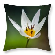 What Came To Mind Throw Pillow