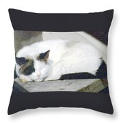What Do Cats Dream Of #2 Throw Pillow
