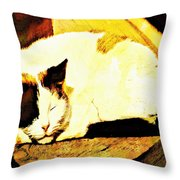 What Do Cats Dream Of Throw Pillow