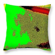 What Do They See Throw Pillow
