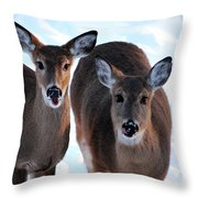 What Do You Say Throw Pillow