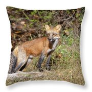 What Does The Fox Say Throw Pillow