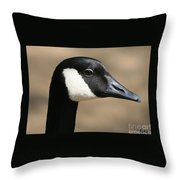 Canadian Goose Throw Pillow