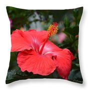 What Dreams May Come Throw Pillow