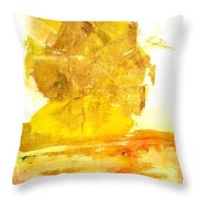 What Have We Done Throw Pillow