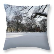 What I Love About Winter Throw Pillow