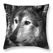 What Is A Wolf Thinking Throw Pillow