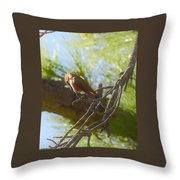 What Is Down There Throw Pillow