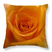 What Is In A Rose? Throw Pillow