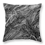 What Is It Throw Pillow