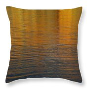 What Is Throw Pillow