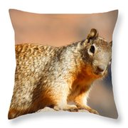 What R U Looking At ??? Throw Pillow