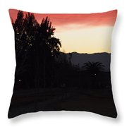 What The Naked Eye Cannot See Throw Pillow