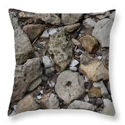 What The Tide Brings In Throw Pillow