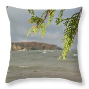 What To Focus Throw Pillow