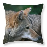 What Was That Sound Throw Pillow